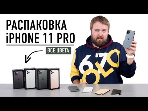 iphone 11 pro vs max