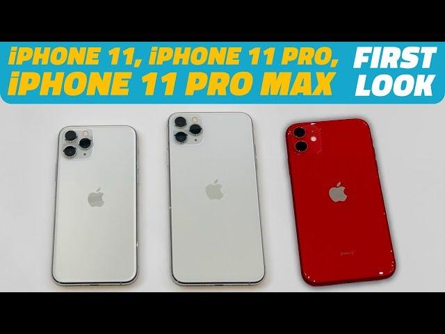 iphone 11 vs xr